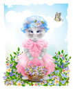 funny cat dressed in the pink frock Royalty Free Stock Photo