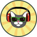 Funny cat with headphones and sunglasses in music Stock Image