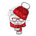 A funny cat in a knitted hat and scarf. Vector illustration for a postcard or a poster, print for clothes. New Year and Christmas. Royalty Free Stock Photo