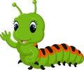Funny caterpillar runs