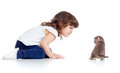 Funny child and kitten sitting on floor Royalty Free Stock Photo