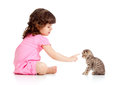 Funny child playing and bringing up kitten Royalty Free Stock Photo