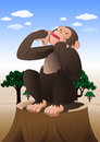 Funny chimpanzee monkey sitting in nature background