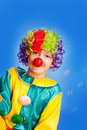 Funny clowns colored hair with Stock Photo