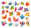 Funny colorful birdies Royalty Free Stock Photo