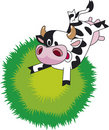 Funny cow Stock Photos