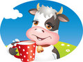 Funny cow drinking milk Stock Images