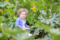Funny cute baby girl on farm in zucchini field playing a a Stock Photo