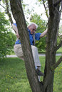 Funny dangerous play eighty year old perky old man climbs up a tree Stock Images