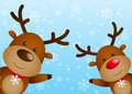 Funny deers on winter background Stock Photos