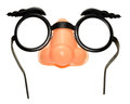 Funny Disguise Glasses Royalty Free Stock Photo