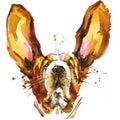 Funny Dog Basset Fashion T-shi...