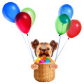 Funny dogs in easter basket with balloons.