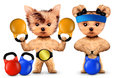 Funny dogs training with kettlebells in sport gym