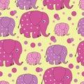 Funny elephants. Zoo.