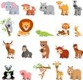 Funny exotic animals