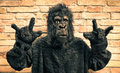 Funny fake gorilla with rock and roll hand gesture hipster concept of anthropomorphic evolution of modern monkey Stock Photo