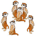 Funny family of meerkats. Vector animals isolated