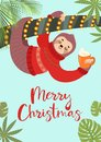 Funny festive greeting card with a cute sloth. Vector illustration. Tropical Christmas poster.