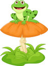 Funny frog sitting on mushroom illustration of Stock Images