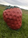 Funny giant strawberry sculpture in the fields Royalty Free Stock Photo