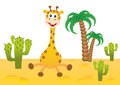Funny giraffe in africa smiling Royalty Free Stock Photos