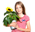 Funny girl  Sunflower Stock Images