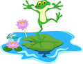 Funny Green frog cartoon on a leaf Royalty Free Stock Photo