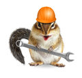 Funny handyman chipmunk worker with helmet and wrench isolated o Royalty Free Stock Photo