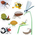 Funny insect set #2 Royalty Free Stock Photography