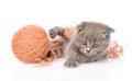 Funny kitten playing with a ball of wool yarn. isolated on white Royalty Free Stock Photo