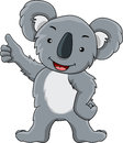 Funny koala cartoon Stock Photography