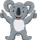 Funny koala cartoon Stock Images