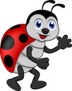 Funny lady bug cartoon illustration of Stock Photography