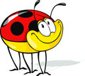 Funny ladybug cartoon cute on white background Royalty Free Stock Photography