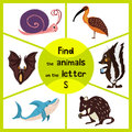 Funny learning maze game, find all 3 cute wild animals with the letter S, forest skunk, shark predatory sea slug and the snail. Ed