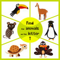 Funny learning maze game, find all 3 cute wild animals with the letter T, tropical Toucan from South America, sea turtle and poult