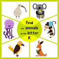 Funny learning maze game find all of cute wild animals to the letter k the australian kiwi bird marsupial the kangaroo and th Royalty Free Stock Images