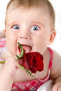 Funny looking little girl with rose Stock Photo