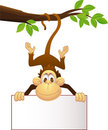 Funny monkey with blank sign Royalty Free Stock Image