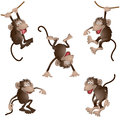 Funny monkey in different poses vector illustration Stock Photos