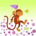 Funny monkey preys on butterfly Royalty Free Stock Photo