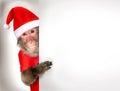 Funny monkey Santa Claus holding Christmas banner