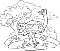 Funny ostrich coloring book