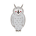 Funny owl. handdrawn. isolated on white background.