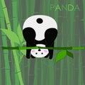 Funny panda vector illustration
