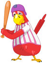Funny Parrot. Baseball. Royalty Free Stock Images