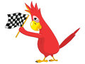 Funny Parrot. Racing. Royalty Free Stock Images