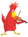 Funny Parrot. Violinist Royalty Free Stock Photography