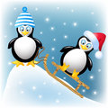 Funny penguins black with sledding Royalty Free Stock Photo